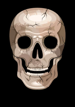 human skull with spots and cracks, front view. Stock Illustratie