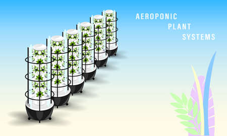 Vertical aeroponics plant system realistic detailed vector.
