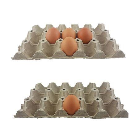 huevos en un recipiente protector Envasado de alimentos