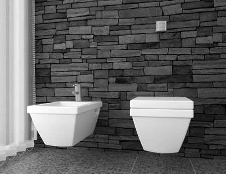 bathroom design: modern toilet with black stone wall and white equipment