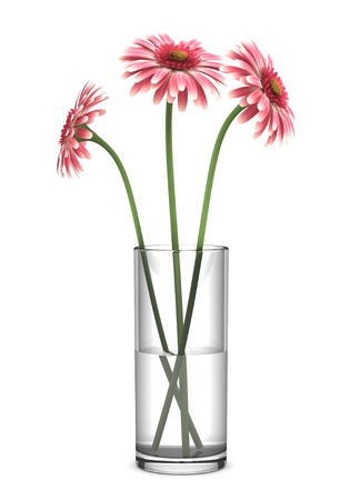 pink gerbera daisies in vase isolated on white background Stock Photo - 13748841