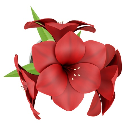 top view of red flower in metallic pot isolated on white background Stock Photo - 17600944