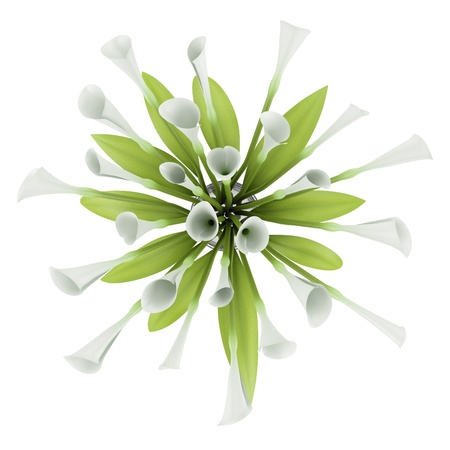 top view bouquet of lilies in glass vase isolated on white background photo