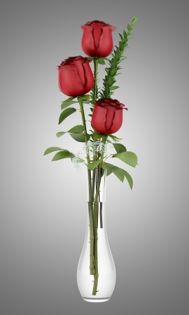 roses in vase: three red roses in glass vase isolated on gray background Stock Photo