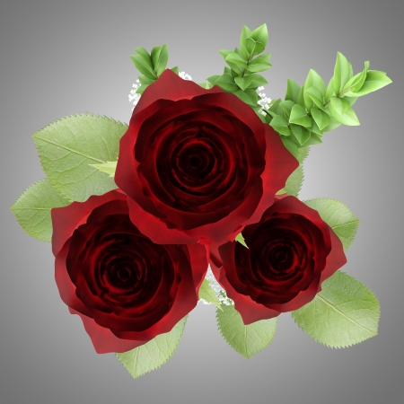 top view of three red roses in vase isolated on gray background Stock Photo - 20915856