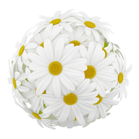 Potted plants: top view of daisies in glass vases isolated on white background