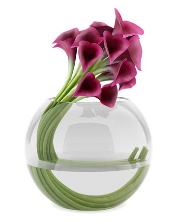 calla lilies in glass vase isolated on white background