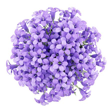 flores moradas: vista desde arriba de las flores de color púrpura en el crisol aislado en el fondo blanco. 3d ilustración