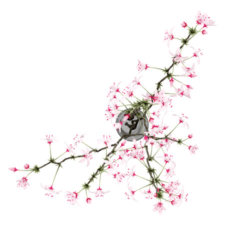 flowering: top view of flowering tree twigs in glass vase isolated on white background. 3d illustration