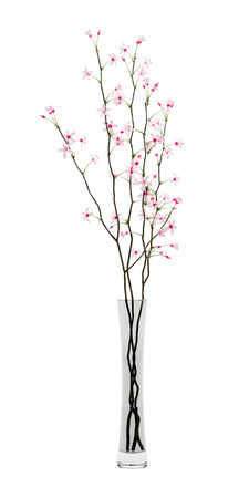 twigs: flowering tree twigs in glass vase isolated on white background. 3d illustration Stock Photo