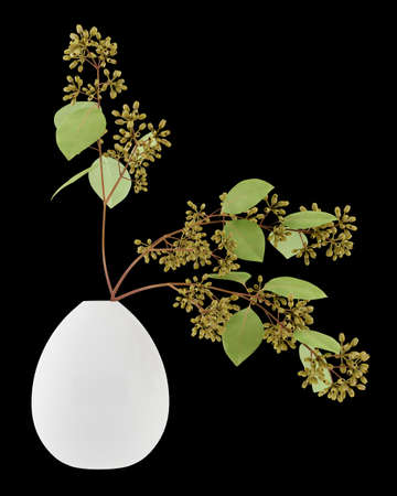 nosegay: sugar gum twigs in vase isolated on black background. 3d illustration