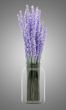 nosegay: purple lupine flowers in glass jar isolated on gray background