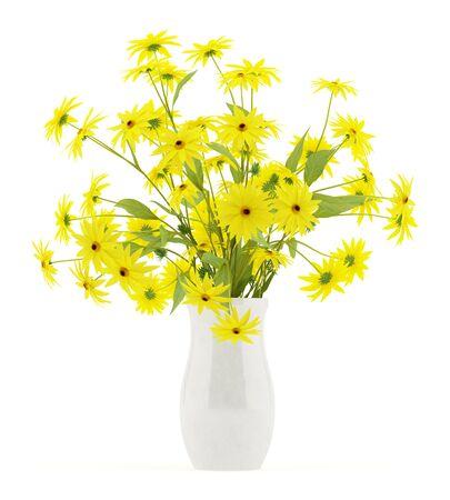 coneflowers: coneflowers in ceramic vase isolated on white background. 3d illustration Stock Photo