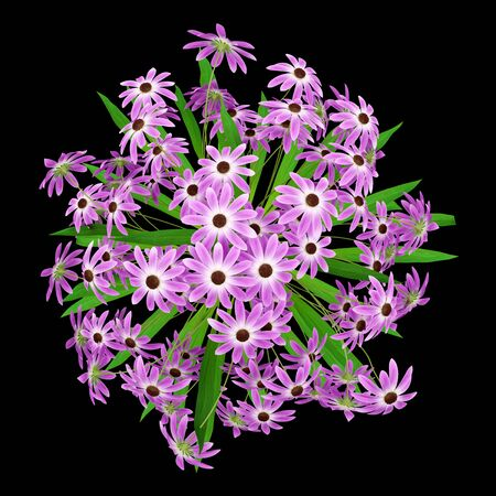 bunch of flowers: top view of purple flowers in vase isolated on black background. 3d illustration