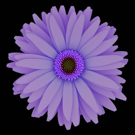3d flower: top view of purple flower isolated on black background. 3d illustration Stock Photo