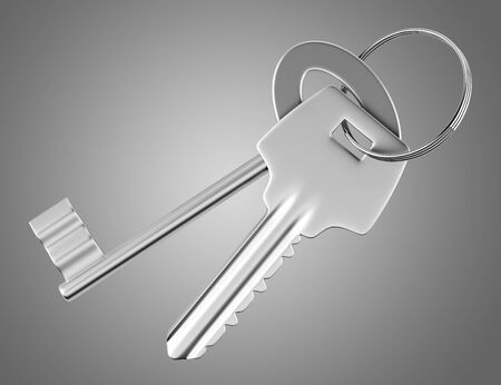 keys isolated: two keys isolated on gray background. 3d illustration