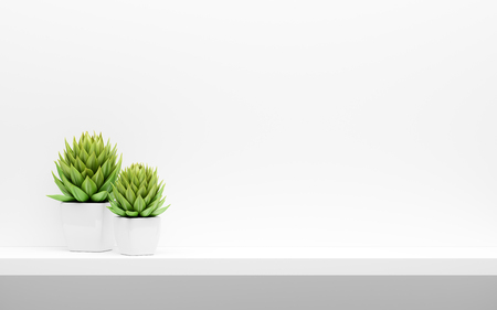 Shelf on white wall with green potted plants mock up. Stok Fotoğraf
