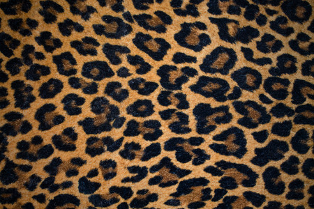horizontal position: leopard background closeup in horizontal position Stock Photo