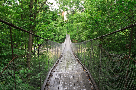 thickets: suspension bridge over the river in the green thickets