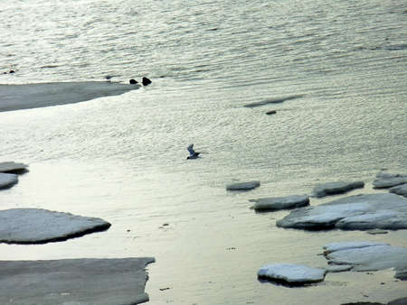ice floes: Spring freeze-up in the Kiev Reservoir