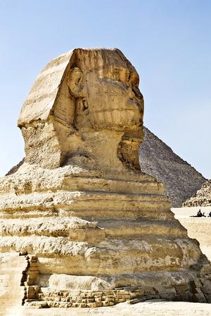 esfinge: estatua de la Esfinge en la meseta de Giza