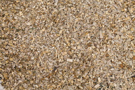 background of scattered wood sawdust closeup