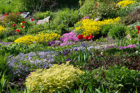 flower beds: garden with flower beds and bright colors Stock Photo