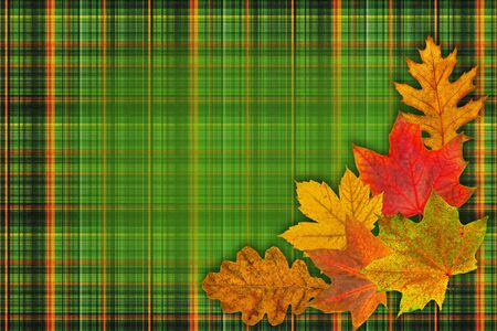 checkered background: green checkered background with autumn leaves