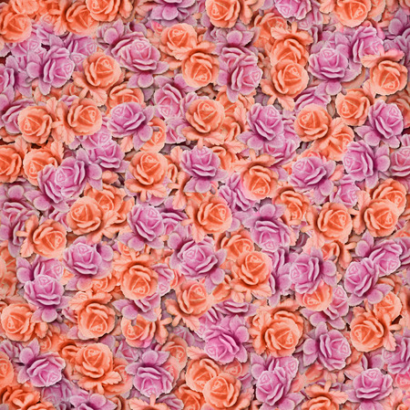 rosas naranjas: background of pink and orange roses closeup