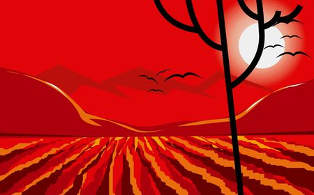 paddy field: Illustration of a agricultural land in sunset  Stock Photo