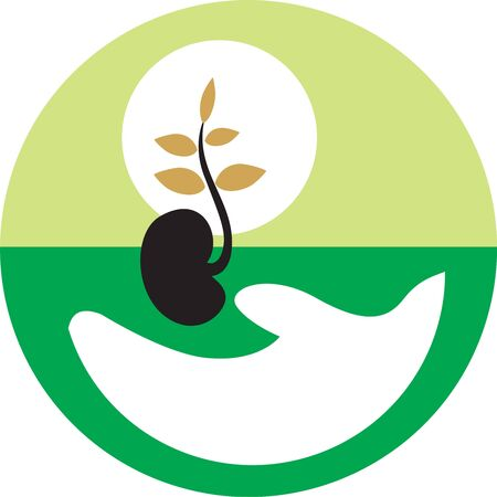seed growing: Illustration of plant growing from the seed  Stock Photo