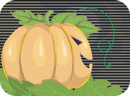 Illustration of Human faced Pumpkin with eyes and mouth   illustration