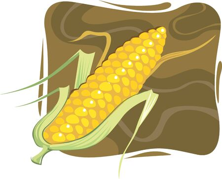 maize: Illustration of maize with petals in brown background  Stock Photo