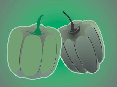 capsicum: Illustration of green capsicum in green background