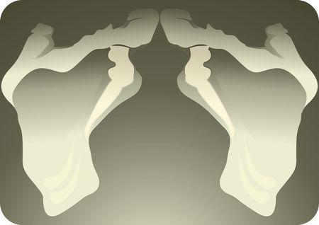 anklebone: Illustration of human pelvic bones