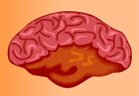 Illustration of human brain in brown background  Stock Illustration - 3389529