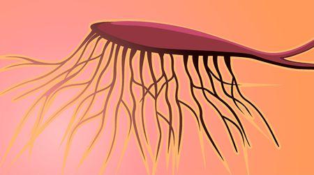 nasal: Illustration of human nasal neuron  Stock Photo