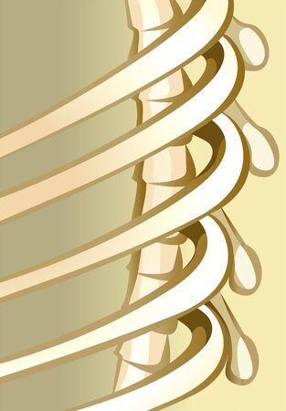 人間の骨格の骨の図