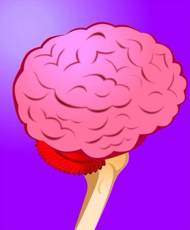 motor neuron: Illustration of human brain