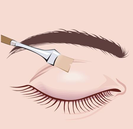 Illustration of Make-Up Brush and a lady�s eye  illustration