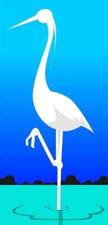 whooping: Crane