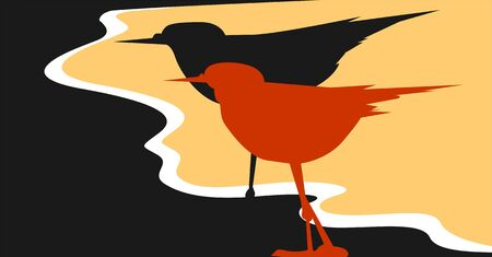 albatross: Illustration of two birds in red and black