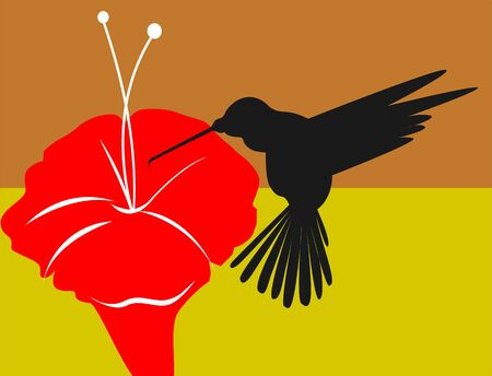 Illustration of a partridge near a hibiscus flower  illustration