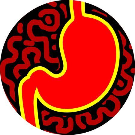 dolor de estomago: Ilustraci�n del est�mago humano de color rojo Foto de archivo