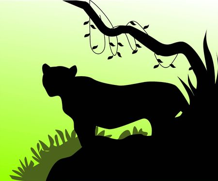 cougars: Illustration of a tiger head in green background  Stock Photo
