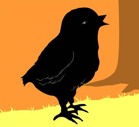 Illustration of silhouette of a chick  illustration
