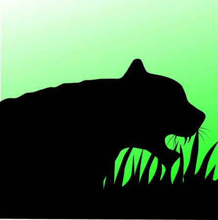 Illustration of a tiger head in green background  illustration
