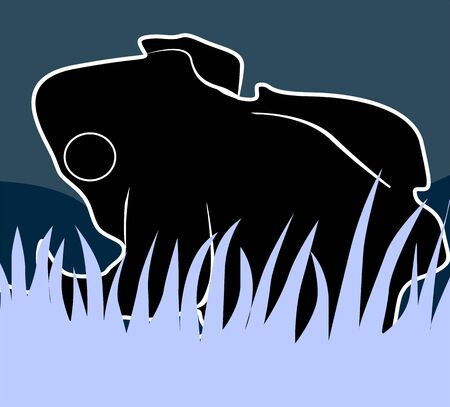 Illustration of a silhouette of a frog  illustration