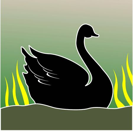 Illustration of a swan in water Stock Illustration - 3423419