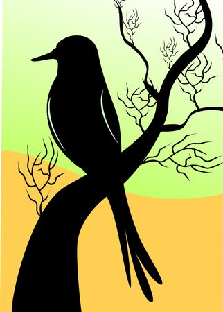 sanctuary: Illustration of a bird sitting on a tree